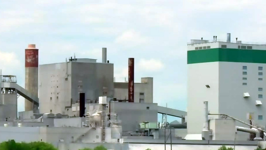 Owners of pulp mill weighing re-opening option
