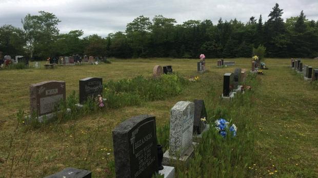 Environmentally Friendly funerals