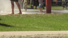 Police have arrested a 50-year-old man who allegedly attempted to abduct a 3-year-old boy from Victoria Park's splash pad.