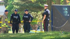 Police investigate after a shooting in the area of Driftwood Avenue and Jane Street, in the early morning hours of Saturday, July 8, 2018.