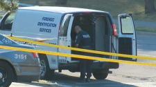Shoreham drive shooting