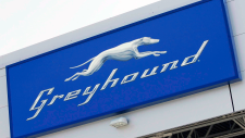 Greyhound cancelling most B.C. routes