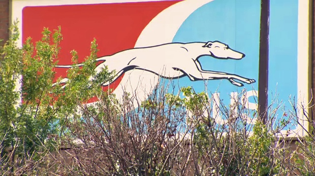 Greyhound Canada logo on the exterior of the bus station in Calgary