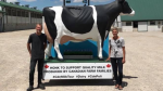 Henk and Bettina Schuurmans left their Elmira farm on June 23 for a cross-country dairy tour. (Source: Facebook/MIlky Wave Inc.)
