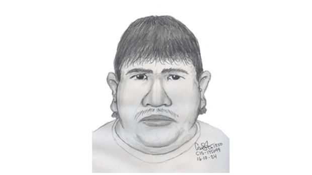 An artist's sketch of the male reported to be seen with a woman with similar descriptor's to Krull. (Source: Winnipeg Police Service)