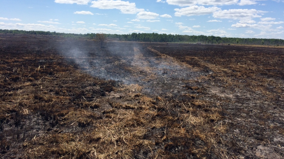 This grass fire in Ramara Township, Ont. has fire crews battling to put out hot spots still burning under the surface on Wednesday, July 11, 2018.  (Rob Cooper/CTV News)