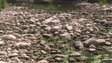 Rocky dry river bed