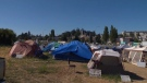 Campers at a tent city in Saanich, dubbed 'Camp Namegas' by residents, have been ordered to cease occupation of the land by the city. July 12, 2018. (CTV Vancouver Island)