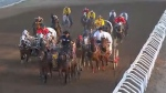 Critics call for changes at Stampede