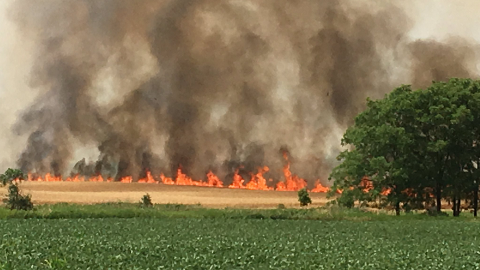 A long line of flames in an Exeter field. (July 12, 2018)