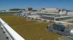 Yorkdale roof green space