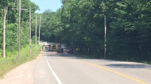 A man has died after crashing his vehicle into a tree on Macavalley Road in Tiny Township on Sunday, July 15, 2018. (CTV News/Don Wright)