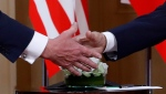 U.S. President Donald Trump, left, and Russian President Vladimir Putin shake hand at the beginning of a meeting at the Presidential Palace in Helsinki, Finland, Monday, July 16, 2018. (AP Photo / Pablo Martinez Monsivais)