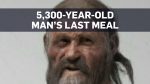 Researchers reveal the Iceman's final meal