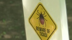 Signs warn of Lyme Disease danger