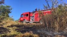 Grass was scorched at Panama Flats in Saanich in a series of spot fires that have been deemed suspicious. July 16, 2018. (CTV Vancouver Island)
