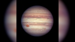 This April 3, 2017 image made available by NASA shows the planet Jupiter. (NASA, ESA, and A. Simon (GSFC) via AP, File)