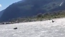 Kayaker's wild encounter with grizzly bear