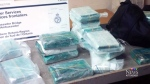 Truck driver found guilty of drug smuggling