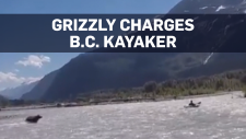 Kayaker charged by grizzly bear