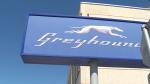 Trudeau steps in on Greyhound issue