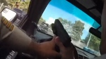 Officer shoots through own window during pursuit