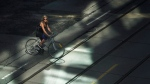 CTV News Channel: Cyclist deaths spike in T.O.