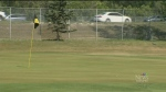St. Vital golf course dubbed green space