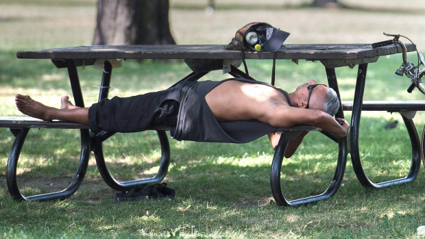 A man relaxes under a tree in a park
