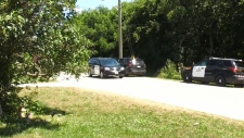 Human remains found in Mount Forest ravine: police