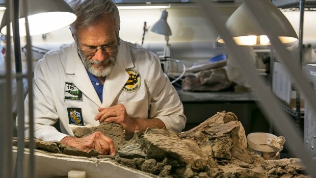 Utah museum unveils fossil from armoured, spiky-headed dinosaur