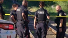 Peel Regional Police officers investigating the disappearance of a five-year-old boy in Brampton on July 19, 2018. The boy was later found critically hurt near rail tracks.