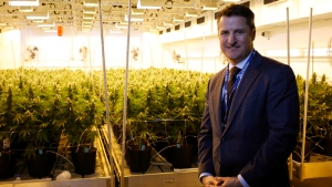Tilray President Brendan Kennedy is photographed at head office in Nanaimo, B.C., on Thursday, November 29, 2017. (THE CANADIAN PRESS/Chad Hipolito)