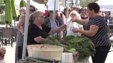 Helping people in need get fresh, local produce