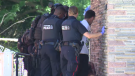 Waterloo Regional Police executed a search warrant and took at least eight people into custody.