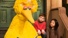 Big Bird reads to Connor Scott and Tiffany Jiao during a taping of Sesame Street in New York on April 10, 2008. (AP Photo/Mark Lennihan, File)