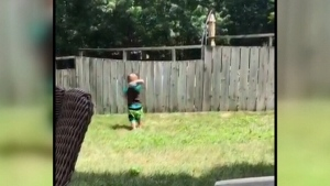 Check out this adorable video of a dog and boy pl