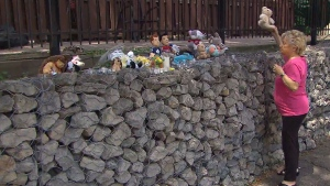A woman leaves a stuffed animal outside the Brampton, Ont. home of a 5-year-old boy who was found with serious injuries Thursday. (CTV Toronto)
