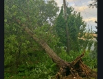 Extensive damage at Kettle Creek golf course in Port Stanley following severe storm