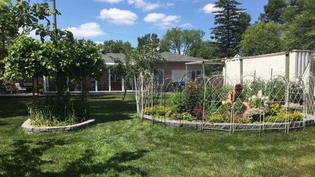 Suzanne Boudreau keeps her garden open to allow birds and deer to wander freely. (Source: Beth Macdonell/ CTV Winnipeg)