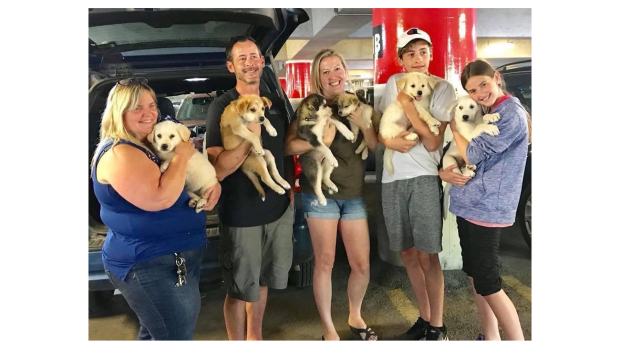 Leroux family as puppies arrive in Ottawa.
