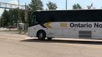 CTV Barrie: Muskoka transit
