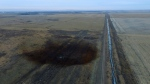 This aerial photo shows spills from TransCanada Corp.'s Keystone pipeline, Friday, Nov. 17, 2017, that leaked an estimated 210,000 gallons of oil onto agricultural land in northeastern South Dakota, near Amherst, S.D.(DroneBase via AP)