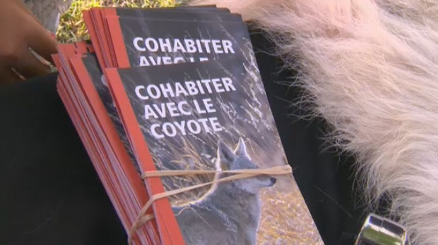 Residents of Ahuntsic-Cartierville were given an information session on coyotes after three children were attacked by the animals over the weekend.