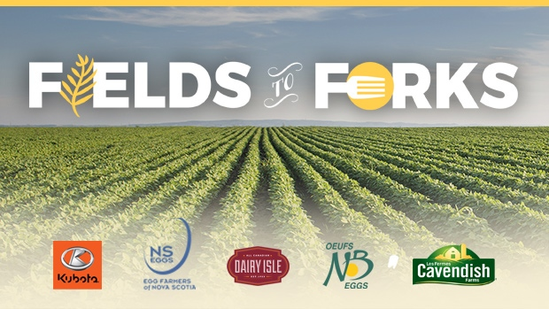 FIELDS TO FORKS Atlantic