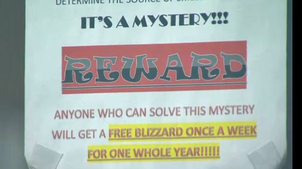 The restaurant is offering free Blizzards to whoever can identify the source of the smell.