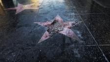 Trump's star vandalized
