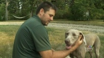 Family against strychnine after pet death