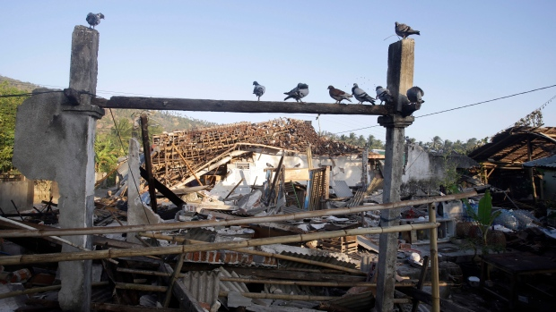 Birds sit above earthquake-damaged homes in North Lombok, Indonesia, Thursday, Aug. 9, 2018. (AP Photo/Firdia Lisnawati)