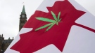 A Canadian flag with a cannabis leaf flies on Parliament Hill during the 4/20 protest, Monday, April 20, 2015 in Ottawa. THE CANADIAN PRESS/Adrian Wyld